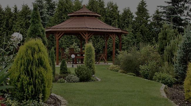 Hamilton Garden Design